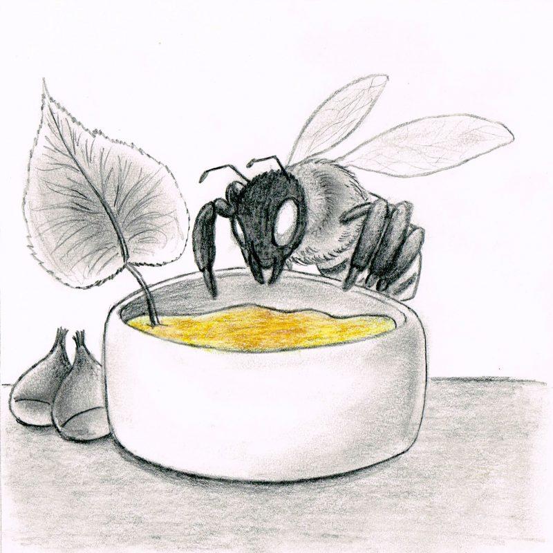 Miele castagno e tiglio